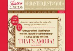 amora-coffee-box-review