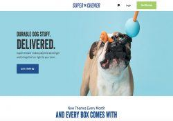 BarkBox Super Chewer Review - Durable Dog Toy Subscription Box