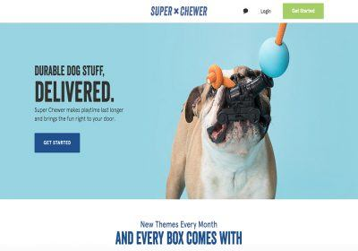 barkbox super chewer homepage