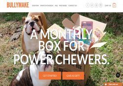 Bullymake Box Review - Power Chewer Toy Subscription Box for Dogs