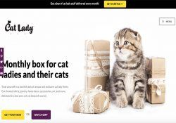 cat lady box homepage