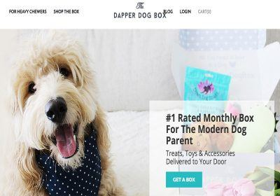 the dapper dog box homepage