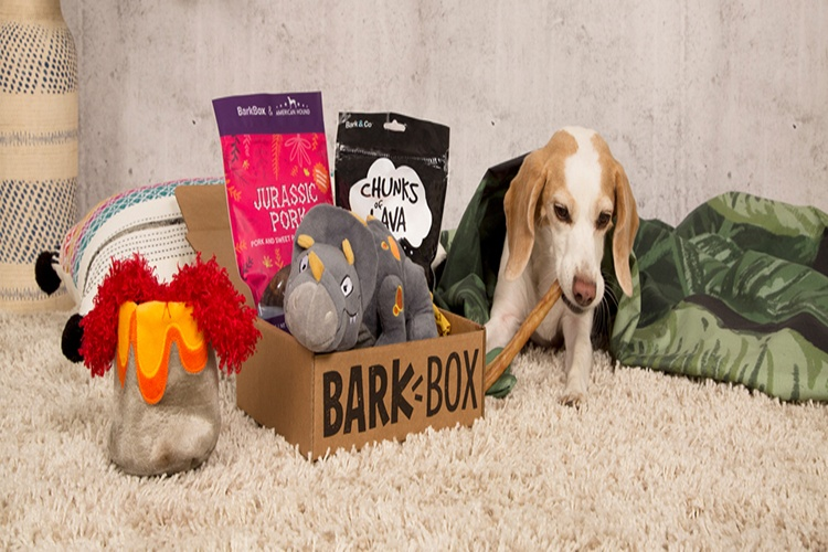 Barkbox delivery