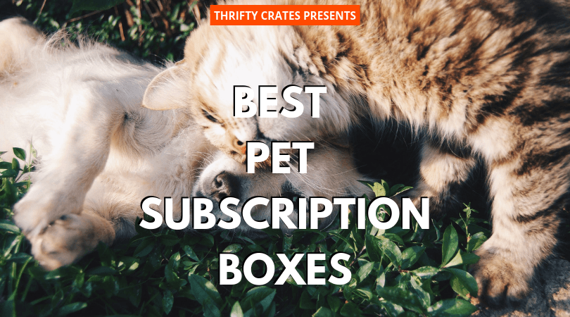 best pet subscription boxes