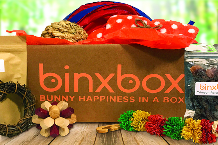 binx box for pet rabbits
