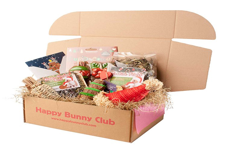 happy bunny club subscription example