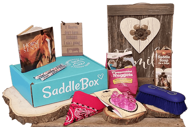 saddle box horse subscription