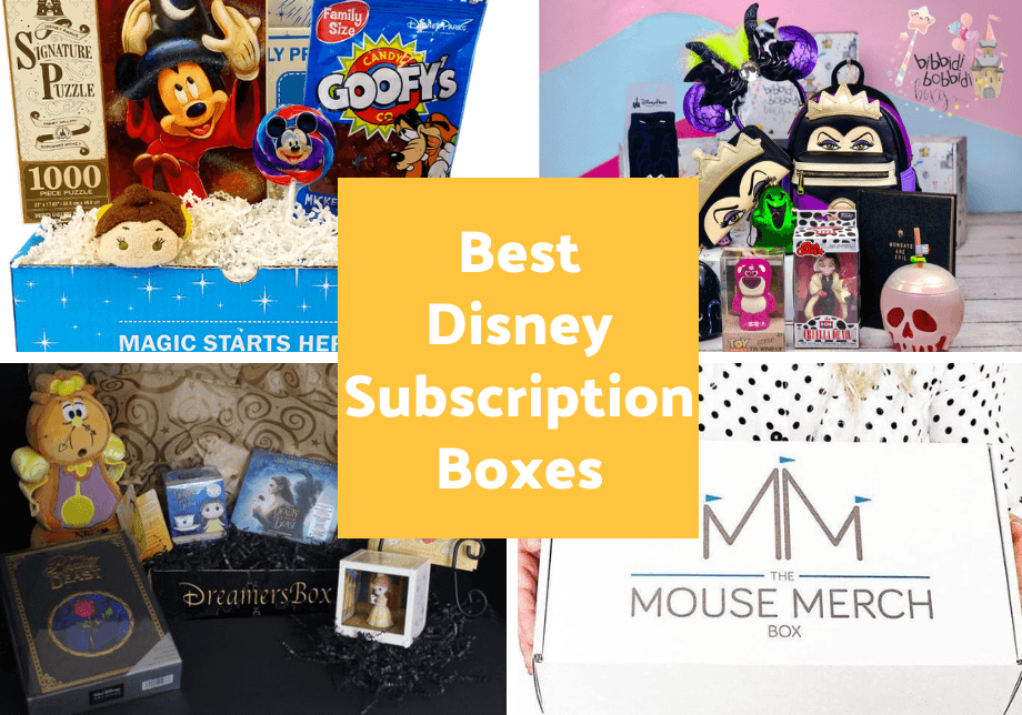 Best Disney Subscription Boxes